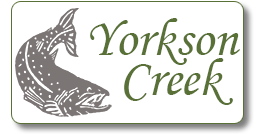 Yorkson Watershed Enhancement Society Logo
