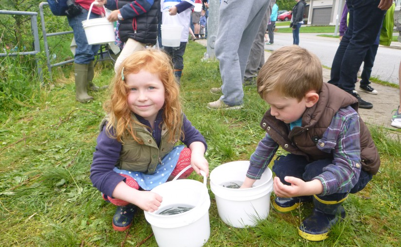 Fish Release a fun day for families